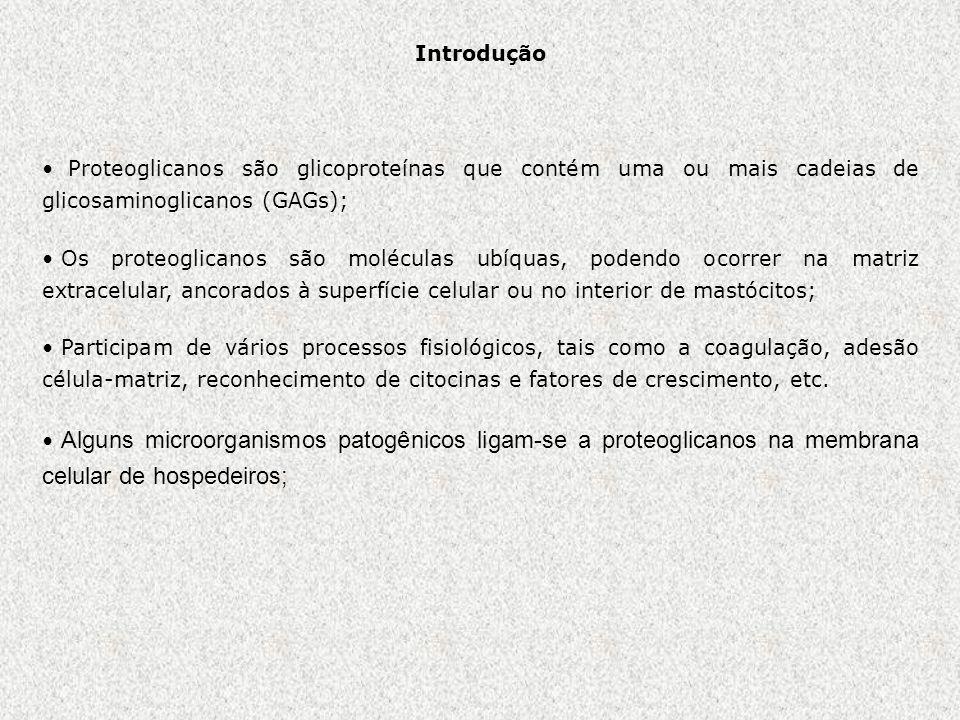 Introdução Proteoglicanos são glicoproteínas que contém uma ou mais cadeias de glicosaminoglicanos (GAGs);