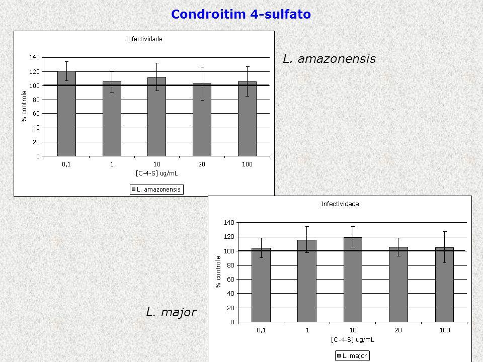 Condroitim 4-sulfato L. amazonensis L. major