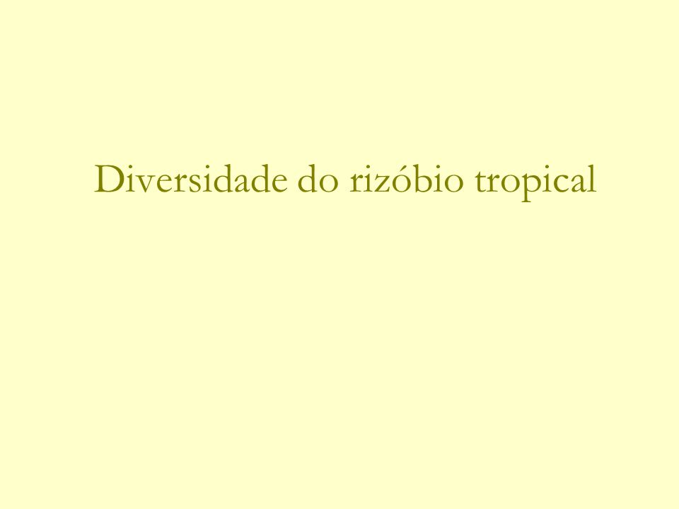 Diversidade do rizóbio tropical