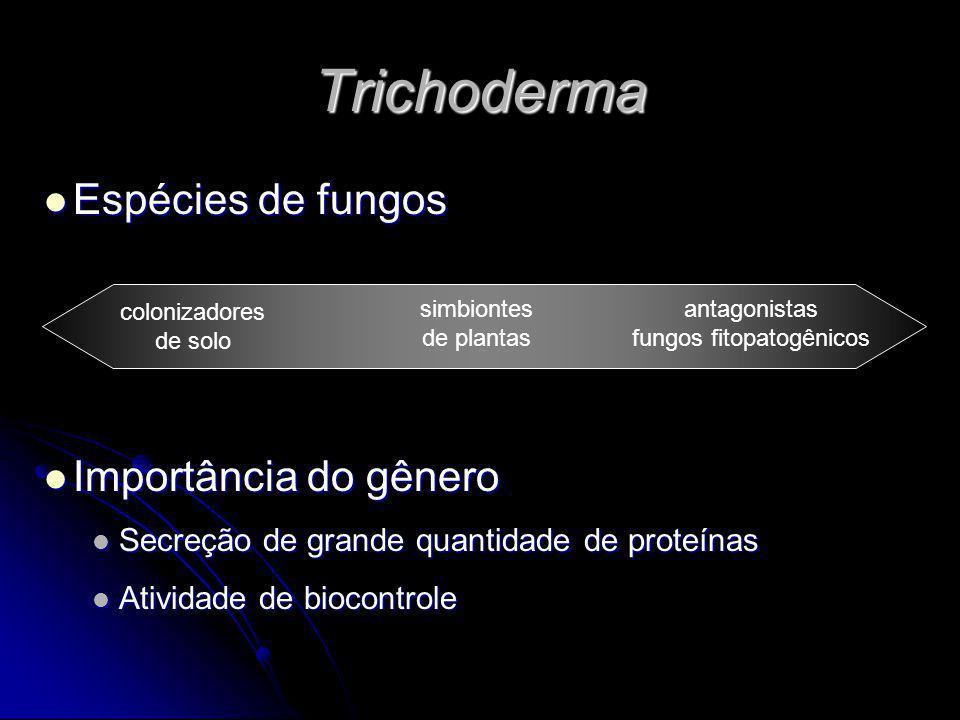 fungos fitopatogênicos