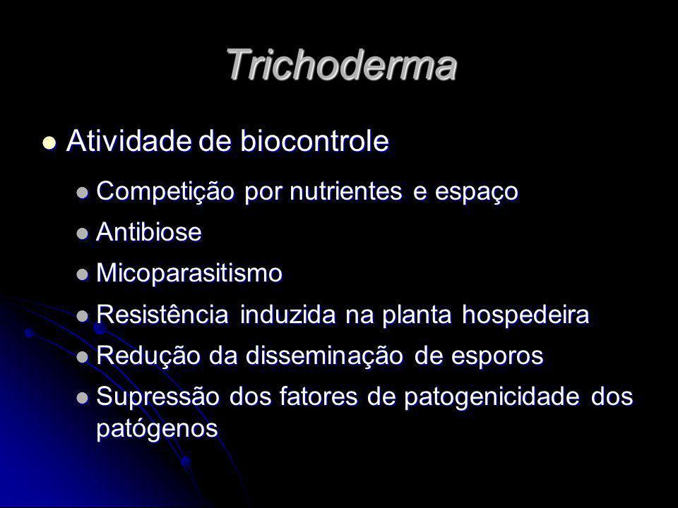 Trichoderma Atividade de biocontrole