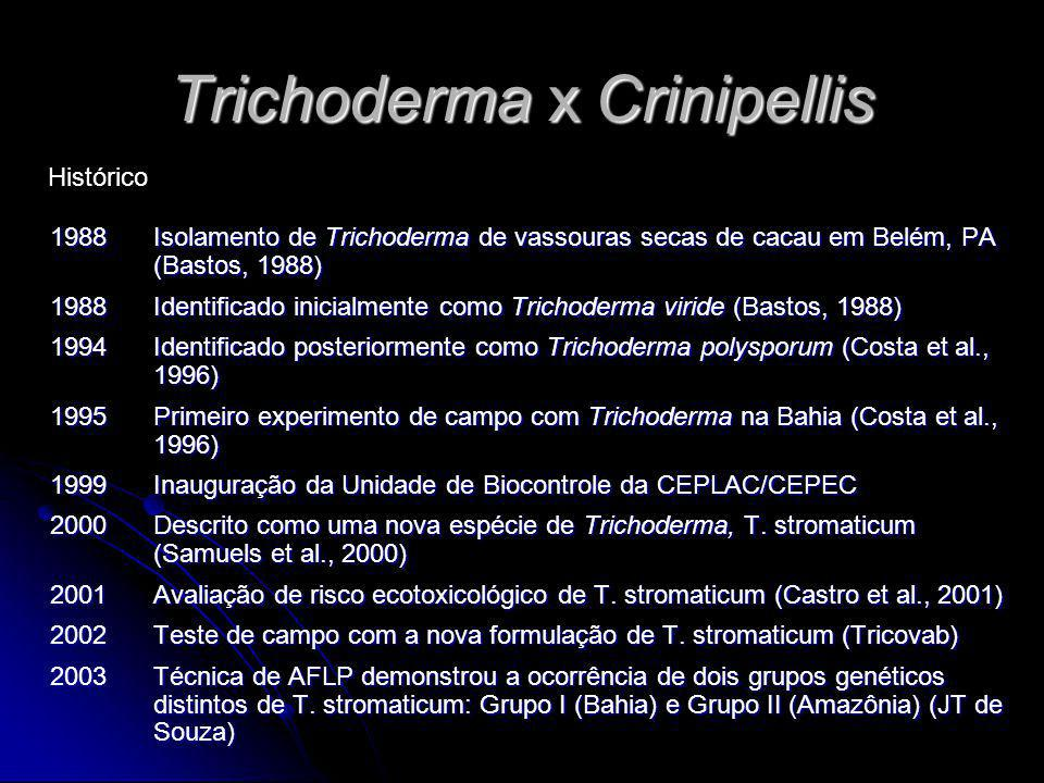 Trichoderma x Crinipellis