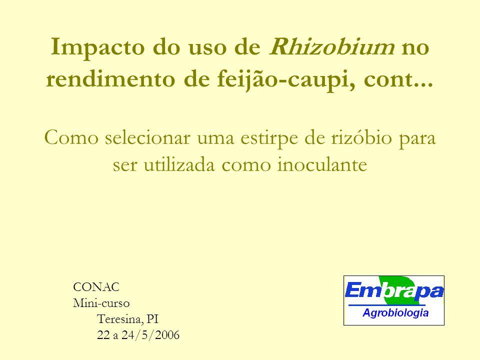 Impacto do uso de Rhizobium no rendimento de feijão-caupi, cont...