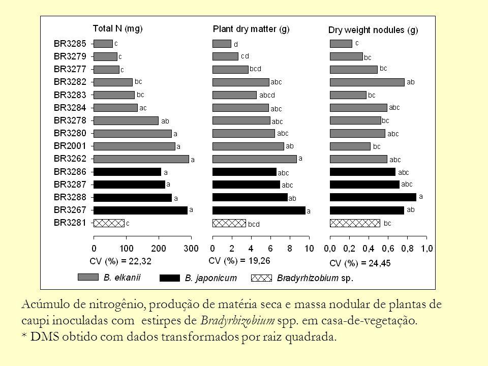 Acúmulo de nitrogênio, produção de matéria seca e massa nodular de plantas de caupi inoculadas com estirpes de Bradyrhizobium spp. em casa-de-vegetação.