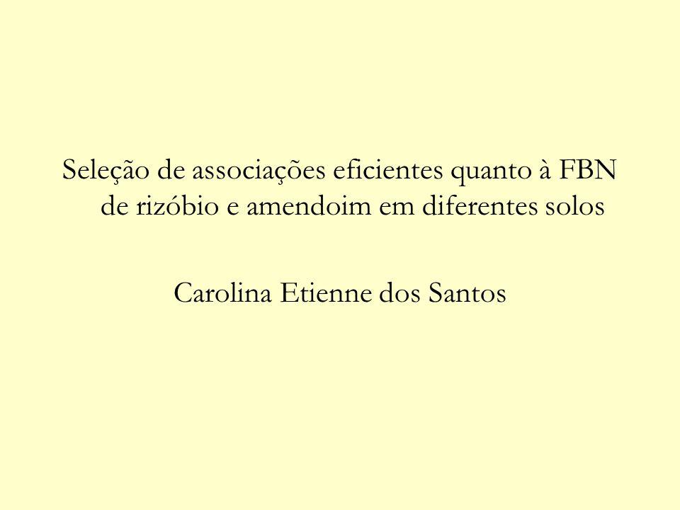 Carolina Etienne dos Santos