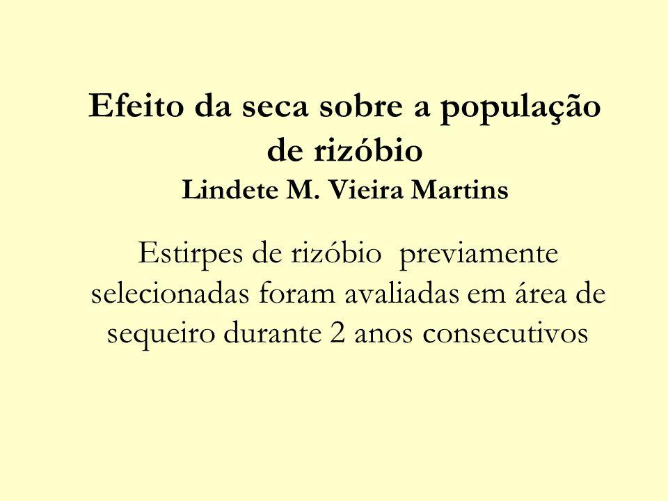 Efeito da seca sobre a população de rizóbio Lindete M. Vieira Martins
