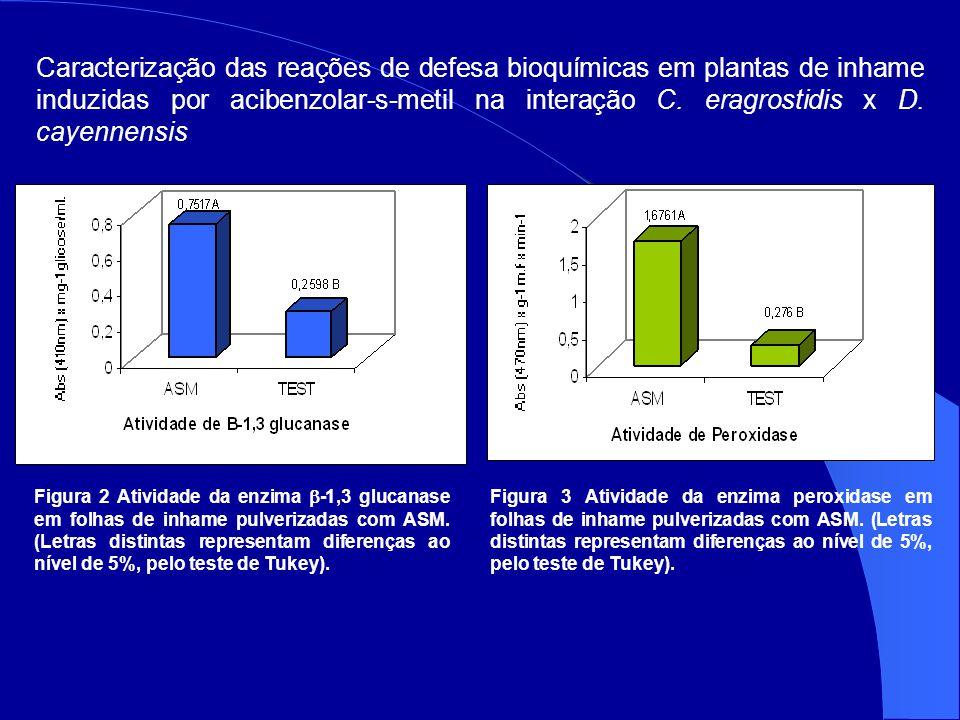 Caracterização das reações de defesa bioquímicas em plantas de inhame induzidas por acibenzolar-s-metil na interação C. eragrostidis x D. cayennensis