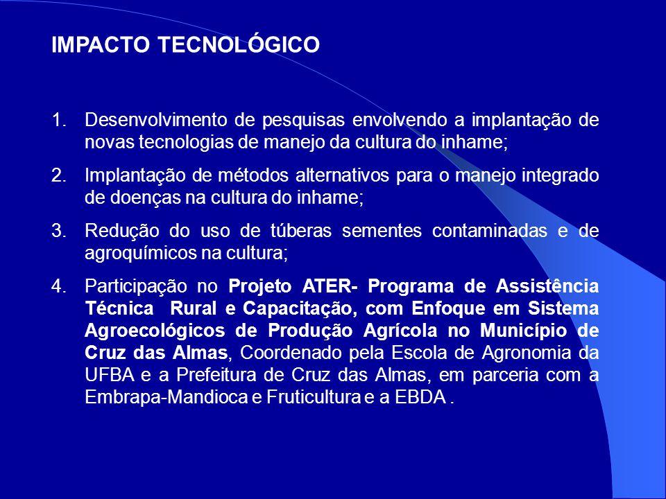 IMPACTO TECNOLÓGICO Desenvolvimento de pesquisas envolvendo a implantação de novas tecnologias de manejo da cultura do inhame;