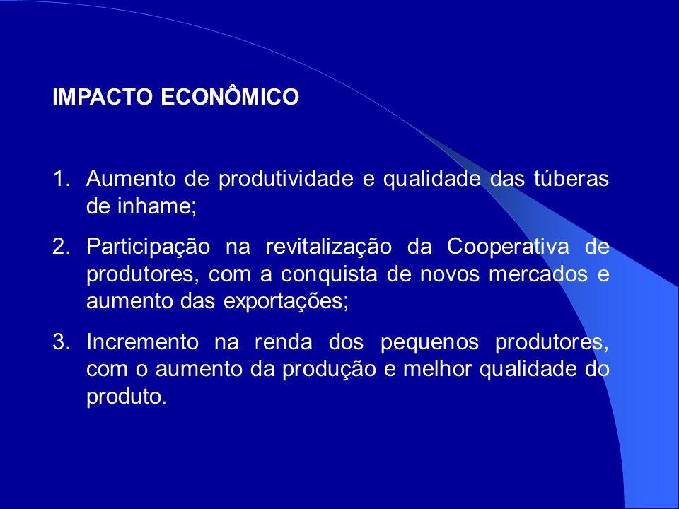 IMPACTO ECONÔMICO Aumento de produtividade e qualidade das túberas de inhame;