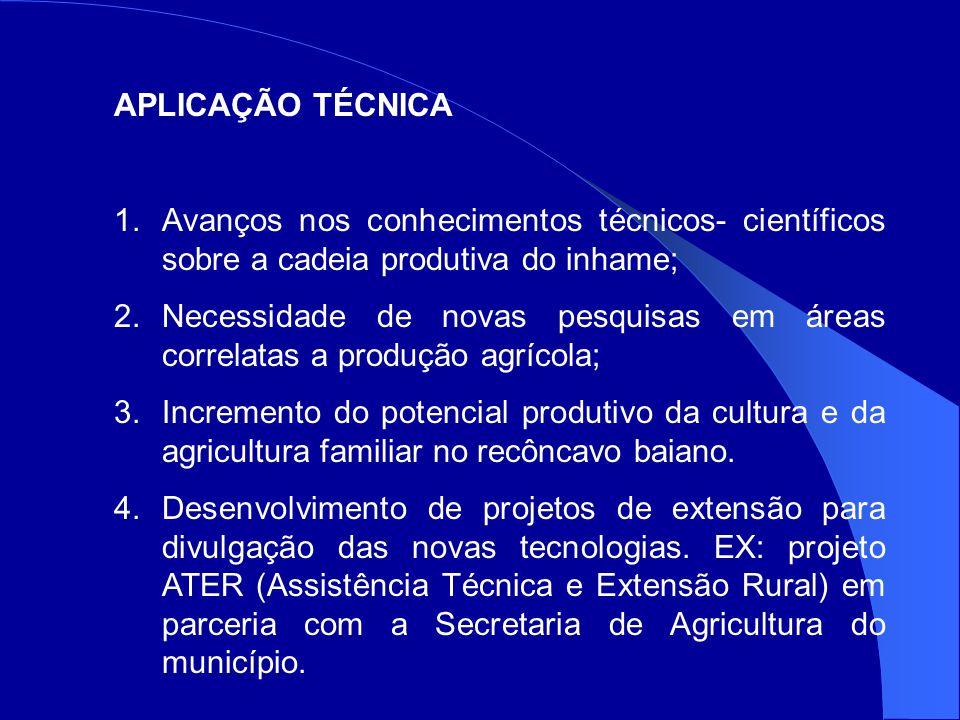 APLICAÇÃO TÉCNICA Avanços nos conhecimentos técnicos- científicos sobre a cadeia produtiva do inhame;