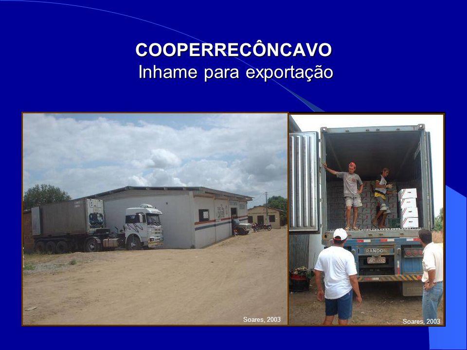 COOPERRECÔNCAVO Inhame para exportação