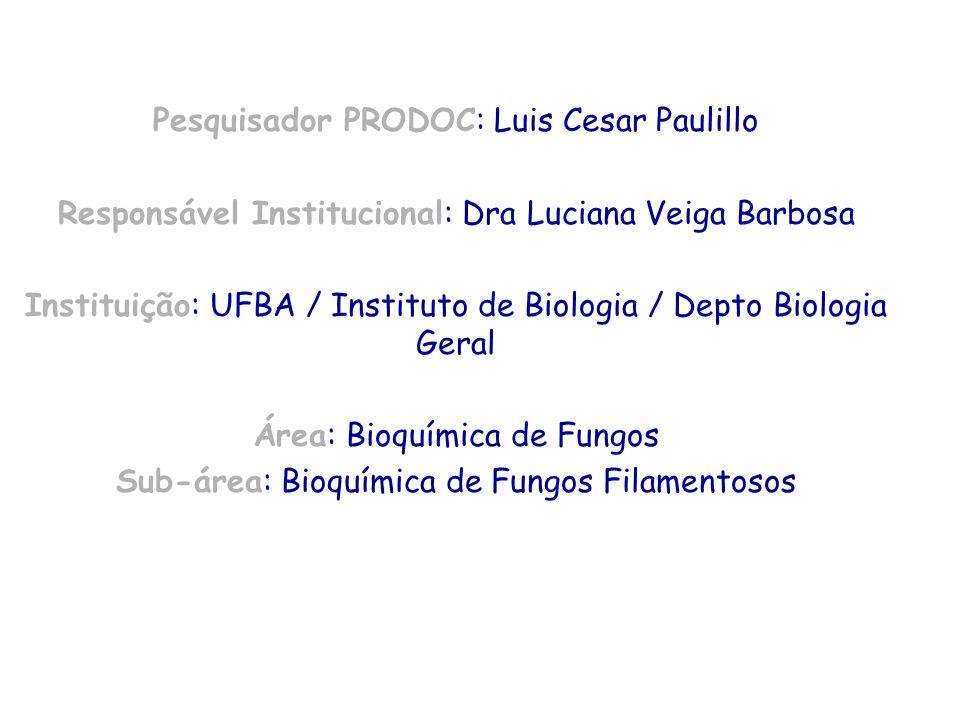 Pesquisador PRODOC: Luis Cesar Paulillo