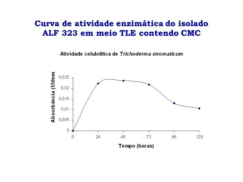 Curva de atividade enzimática do isolado ALF 323 em meio TLE contendo CMC