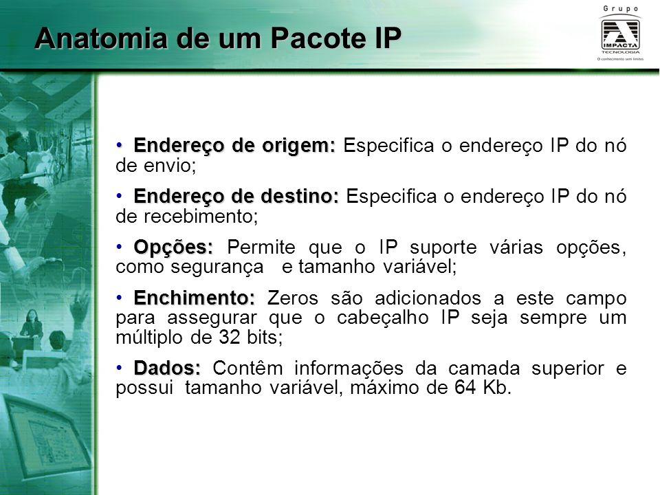 Anatomia de um Pacote IP