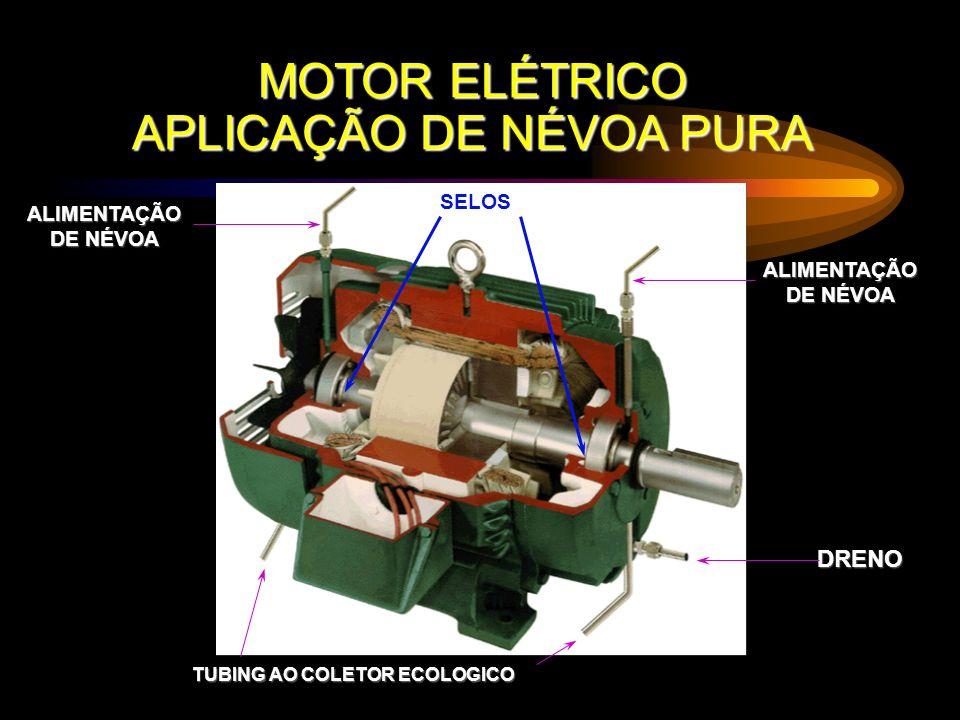 MOTOR ELÉTRICO APLICAÇÃO DE NÉVOA PURA