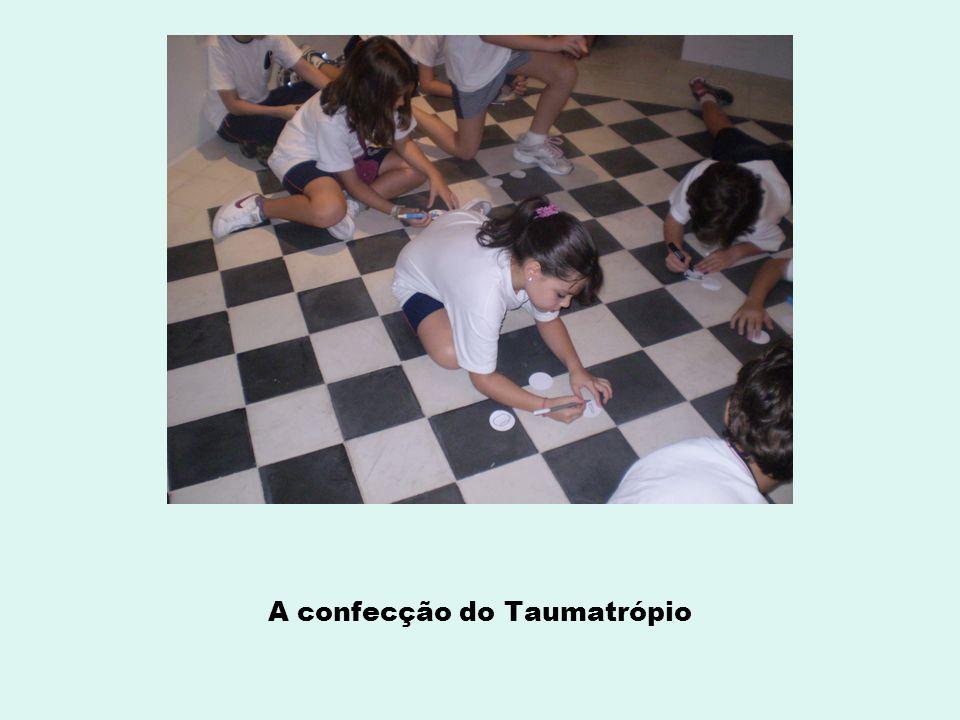 A confecção do Taumatrópio