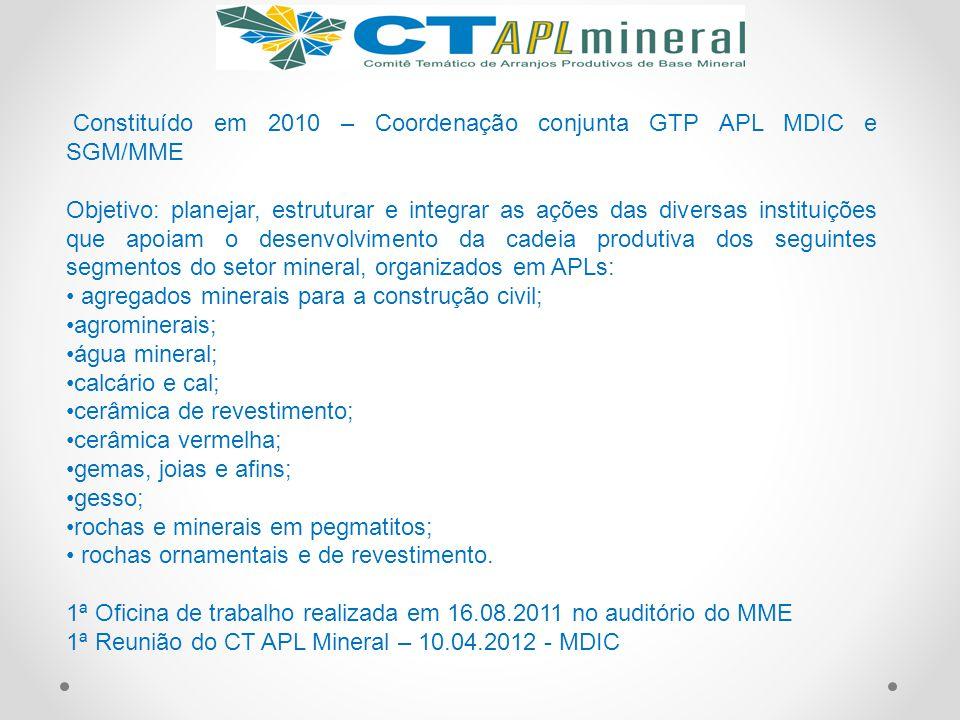 Constituído em 2010 – Coordenação conjunta GTP APL MDIC e SGM/MME