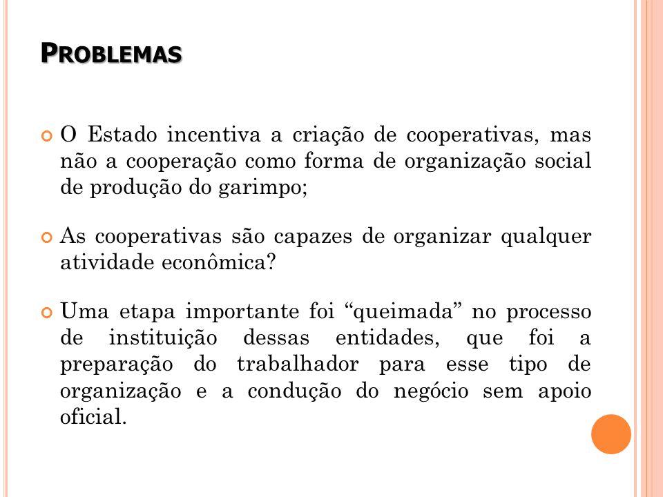 Problemas O Estado incentiva a criação de cooperativas, mas não a cooperação como forma de organização social de produção do garimpo;