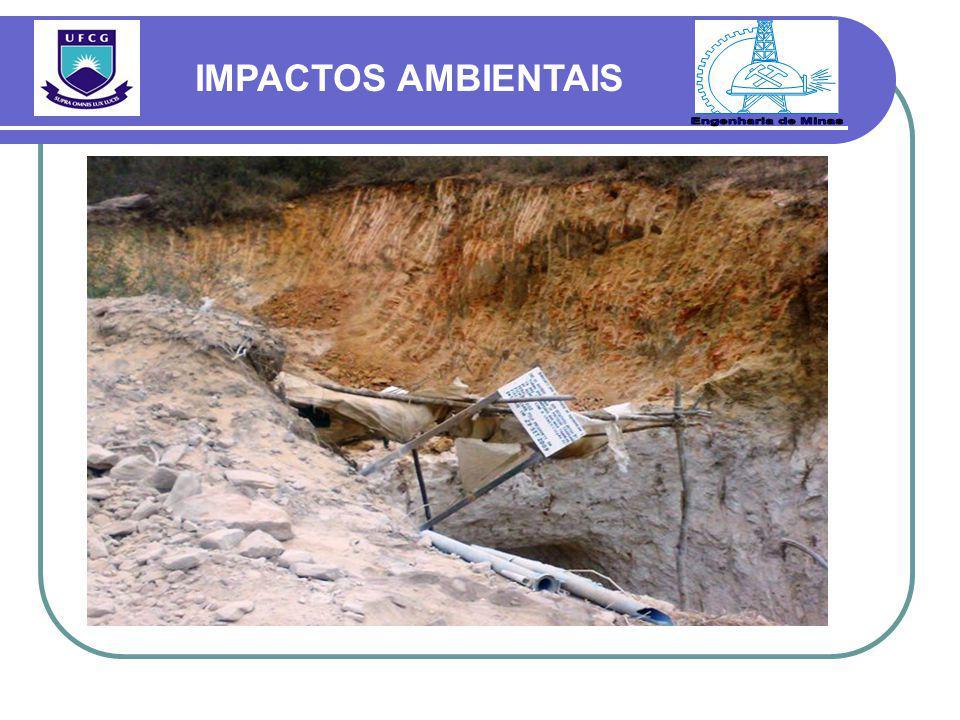 Engenharia de Minas IMPACTOS AMBIENTAIS