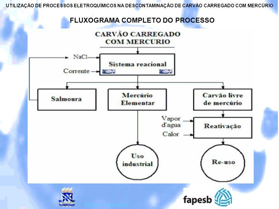 FLUXOGRAMA COMPLETO DO PROCESSO