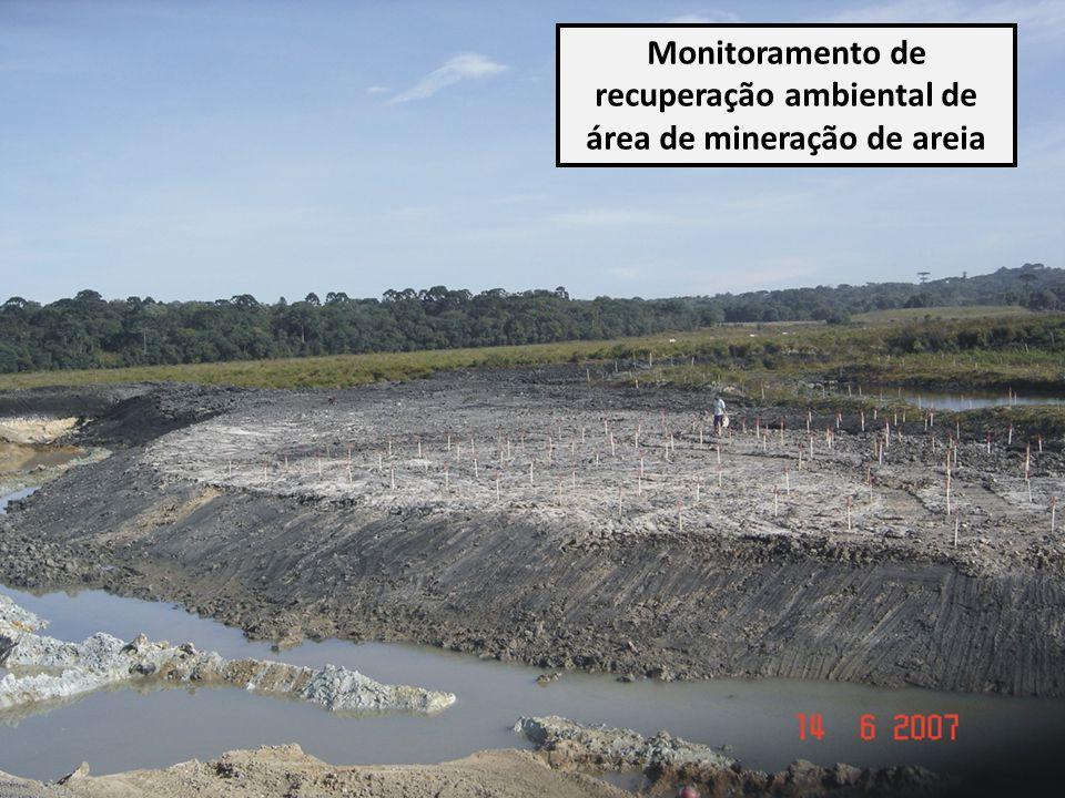 Monitoramento de recuperação ambiental de área de mineração de areia