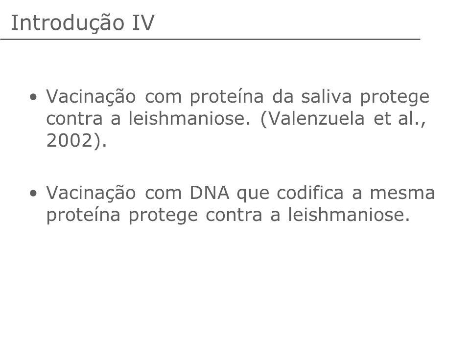 Introdução IV Vacinação com proteína da saliva protege contra a leishmaniose. (Valenzuela et al., 2002).