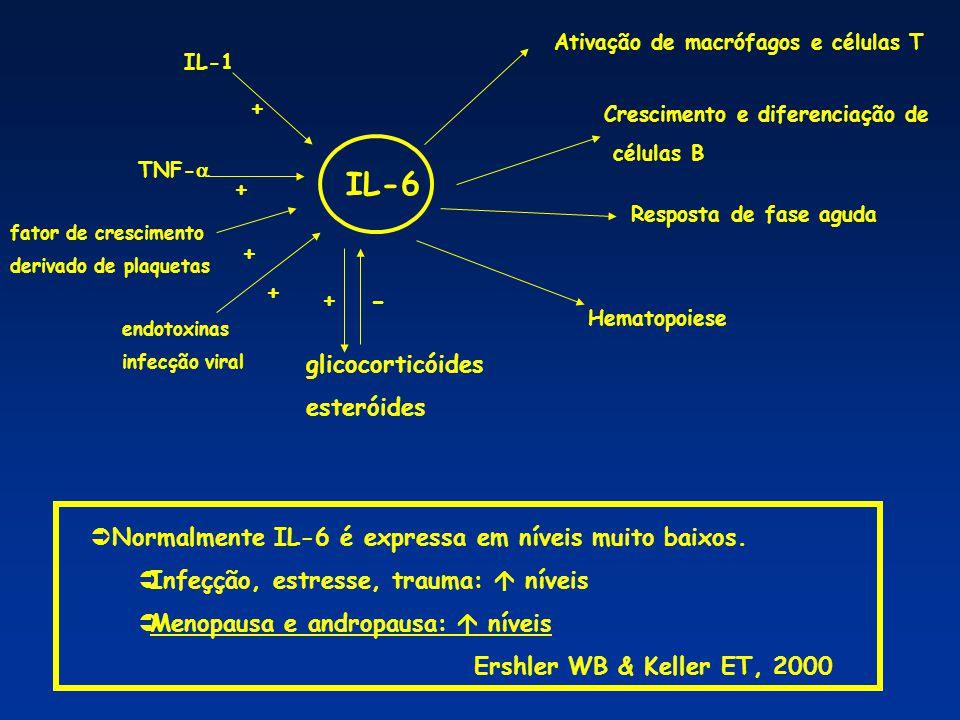 IL-6 - + + + + + glicocorticóides esteróides