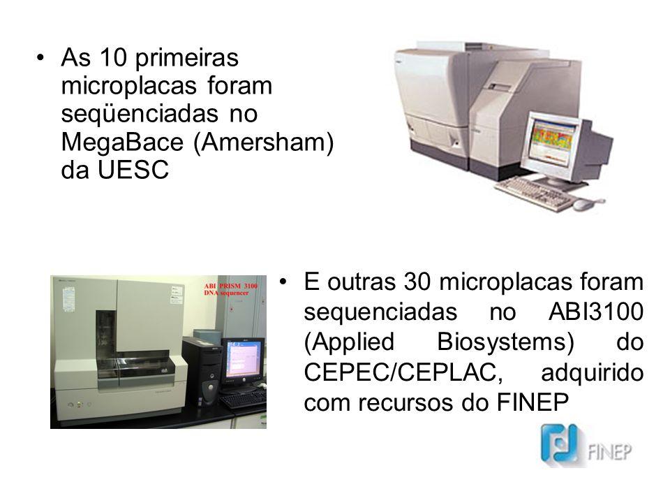 As 10 primeiras microplacas foram seqüenciadas no MegaBace (Amersham) da UESC
