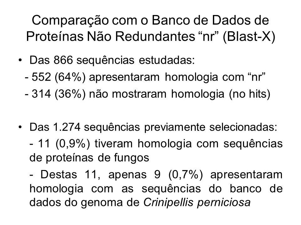 Comparação com o Banco de Dados de Proteínas Não Redundantes nr (Blast-X)