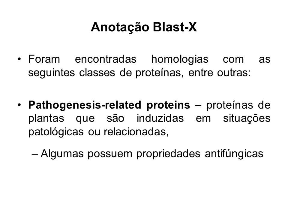 Anotação Blast-X Foram encontradas homologias com as seguintes classes de proteínas, entre outras: