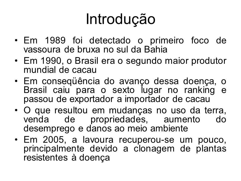 Introdução Em 1989 foi detectado o primeiro foco de vassoura de bruxa no sul da Bahia.