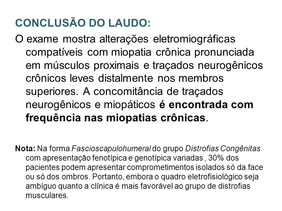 CONCLUSÃO DO LAUDO:
