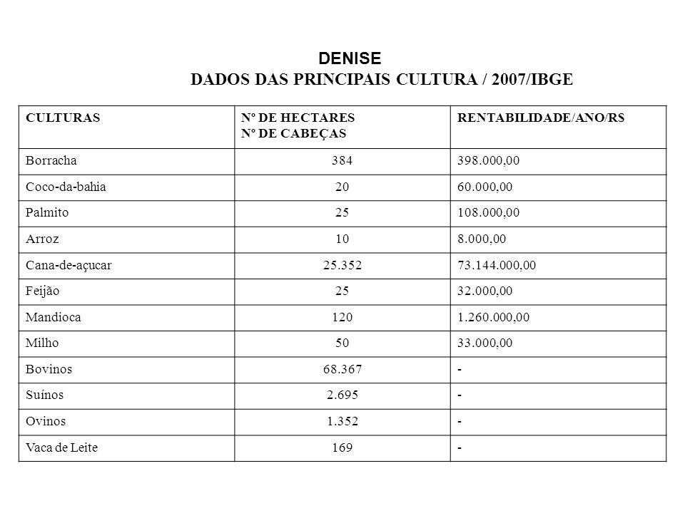 DADOS DAS PRINCIPAIS CULTURA / 2007/IBGE