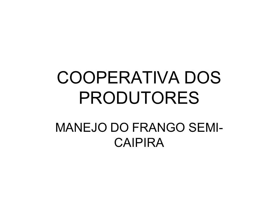 COOPERATIVA DOS PRODUTORES