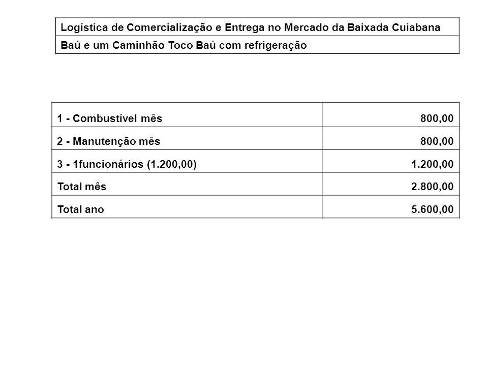 Logística de Comercialização e Entrega no Mercado da Baixada Cuiabana