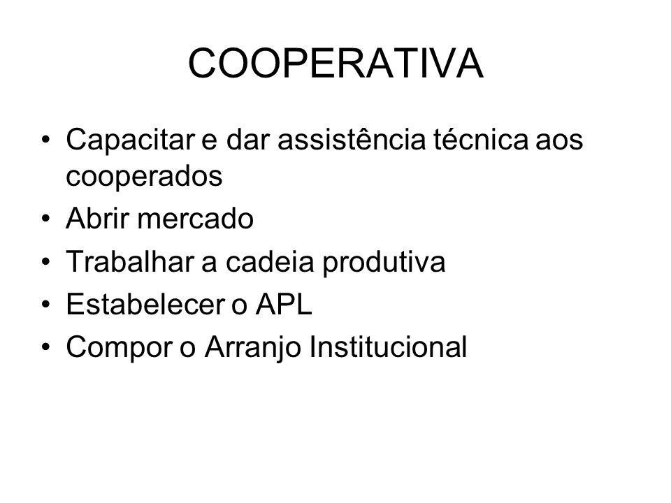 COOPERATIVA Capacitar e dar assistência técnica aos cooperados