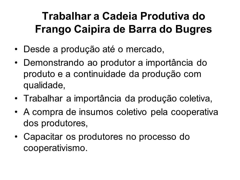 Trabalhar a Cadeia Produtiva do Frango Caipira de Barra do Bugres