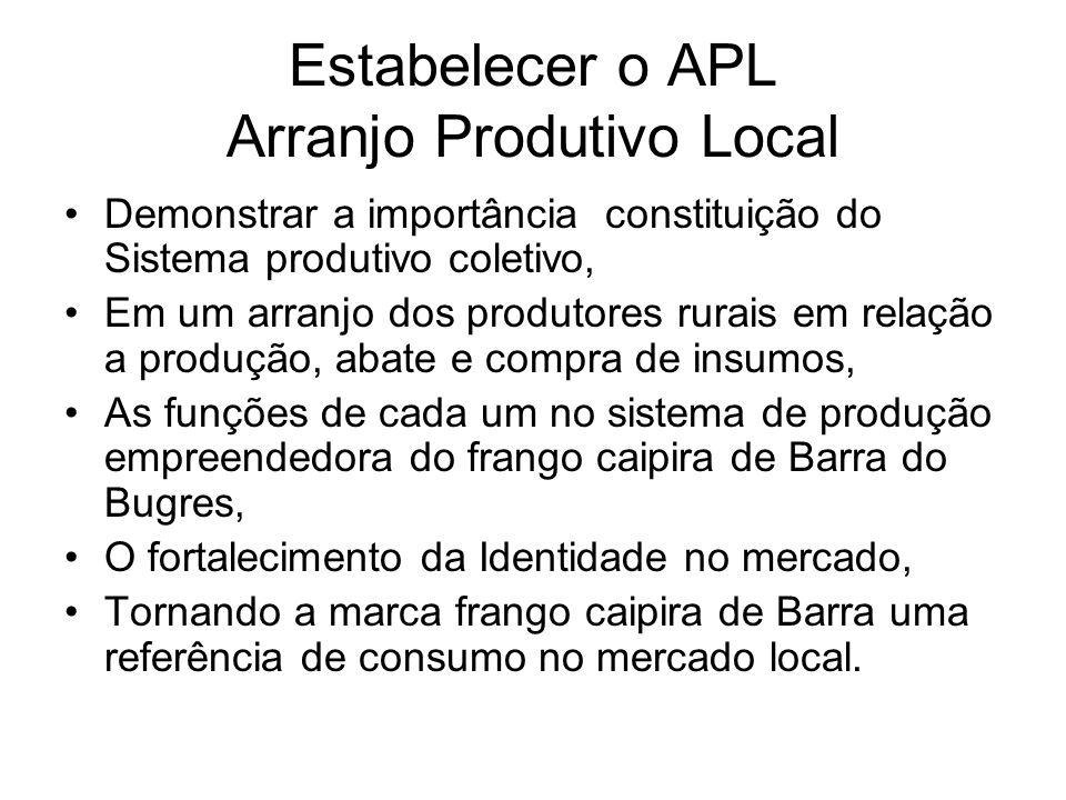 Estabelecer o APL Arranjo Produtivo Local