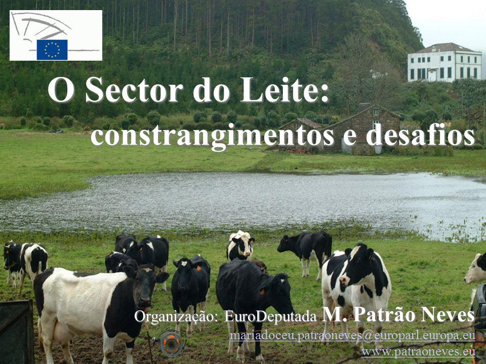 O Sector do Leite: constrangimentos e desafios