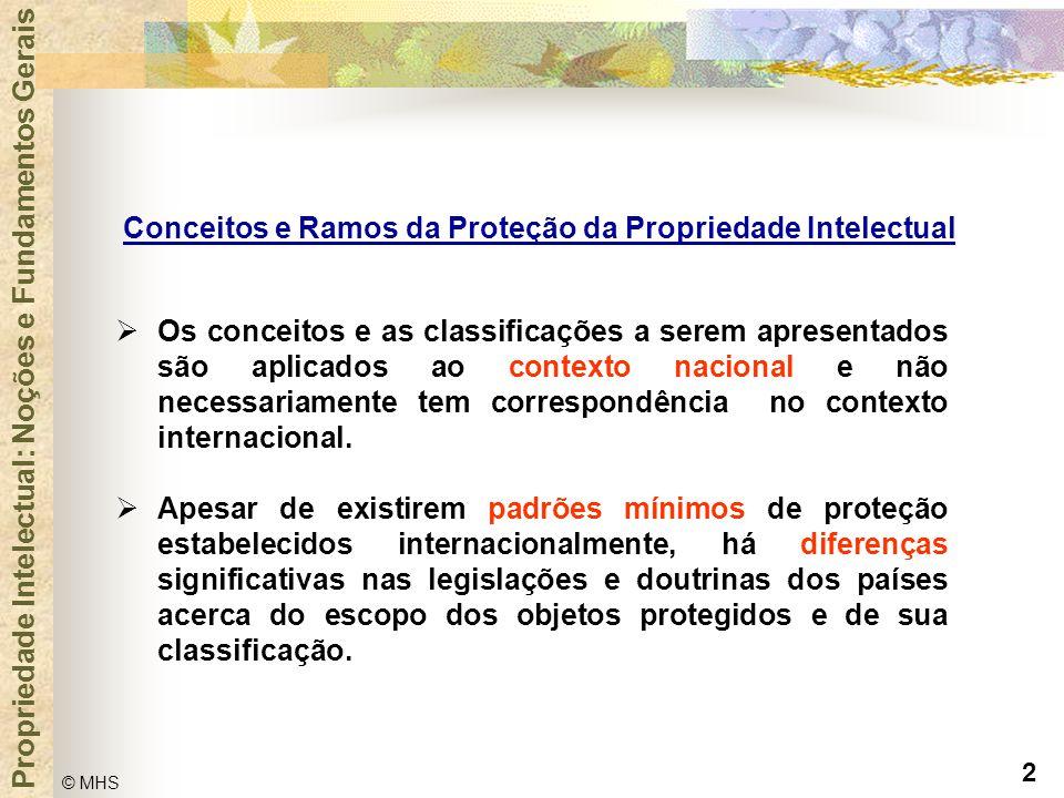 Conceitos e Ramos da Proteção da Propriedade Intelectual