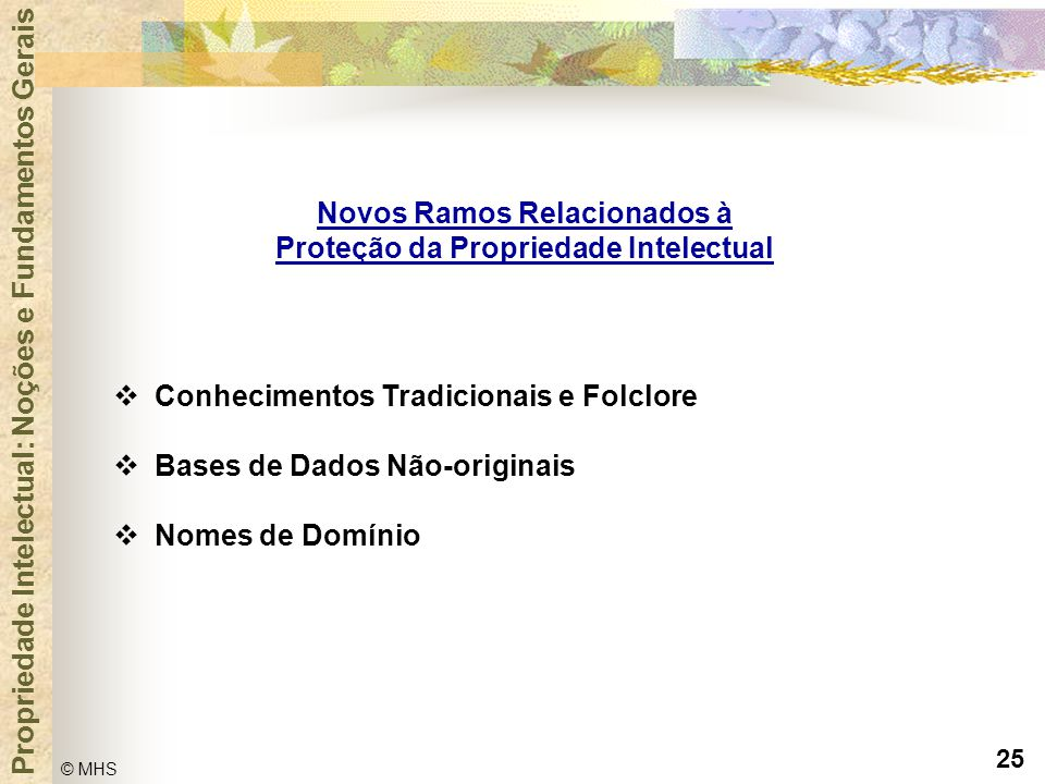 Novos Ramos Relacionados à Proteção da Propriedade Intelectual