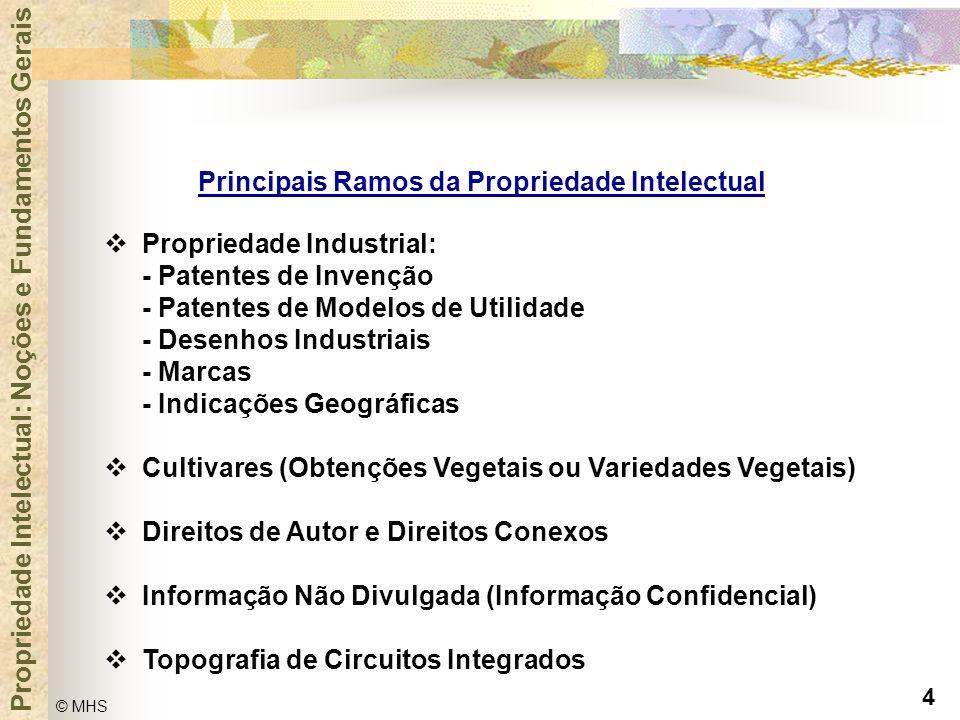 Principais Ramos da Propriedade Intelectual