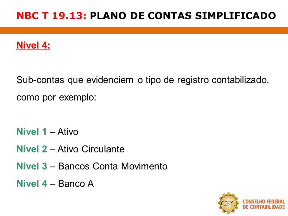 NBC T 19.13: PLANO DE CONTAS SIMPLIFICADO