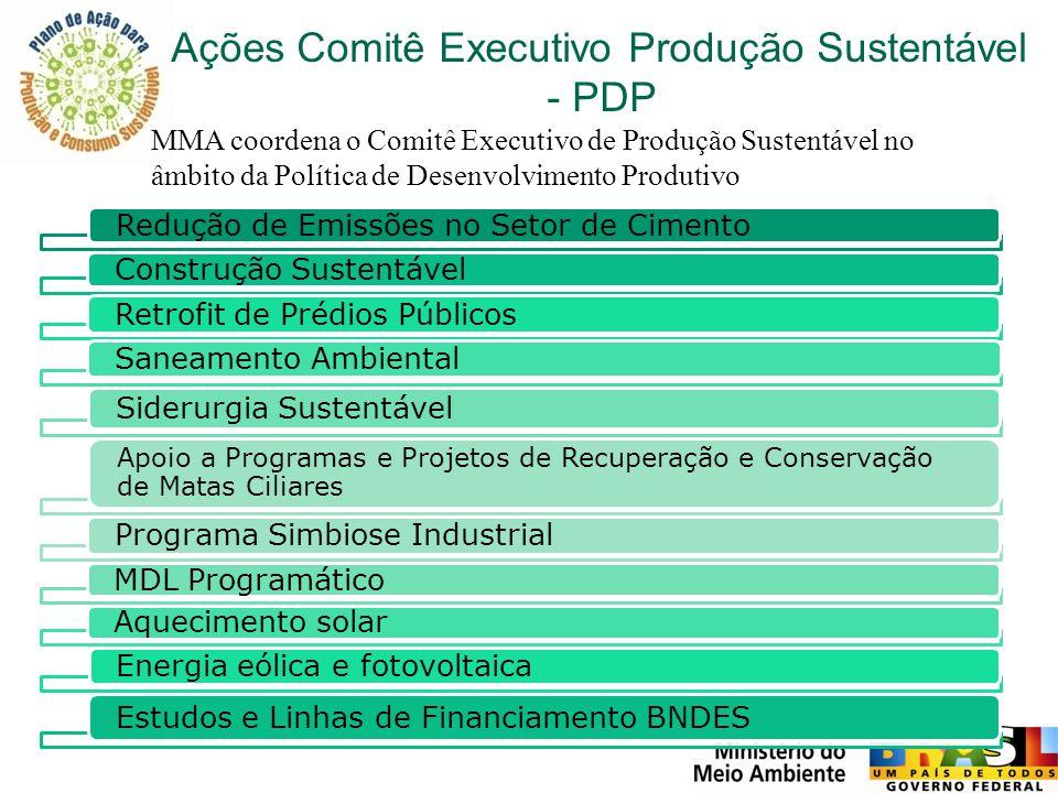 Ações Comitê Executivo Produção Sustentável