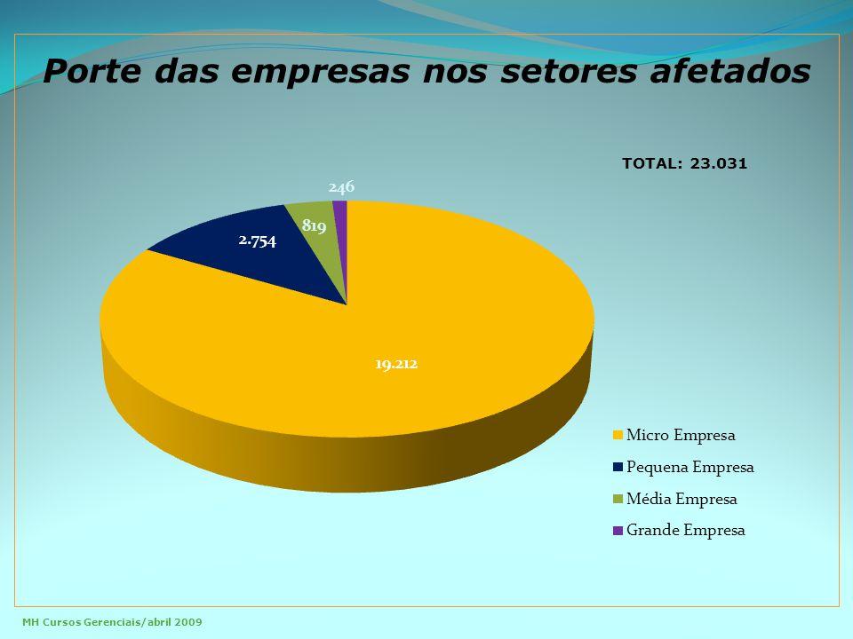 Porte das empresas nos setores afetados