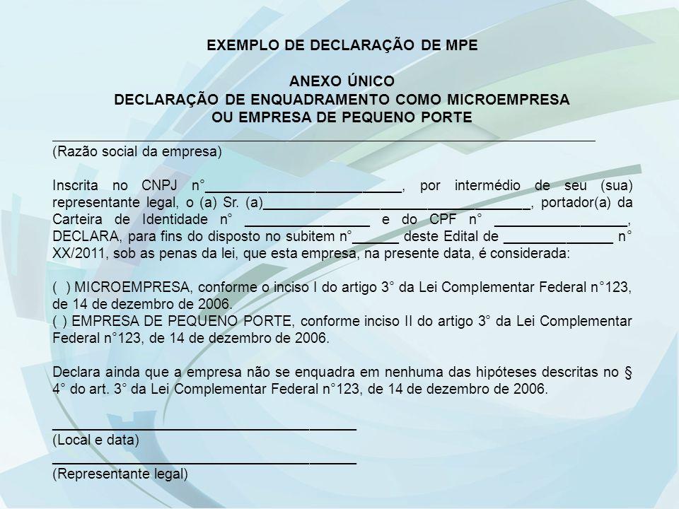 EXEMPLO DE DECLARAÇÃO DE MPE ANEXO ÚNICO