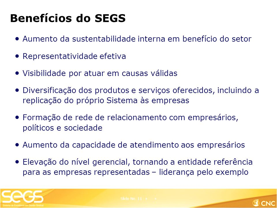 Benefícios do SEGS Aumento da sustentabilidade interna em benefício do setor. Representatividade efetiva.