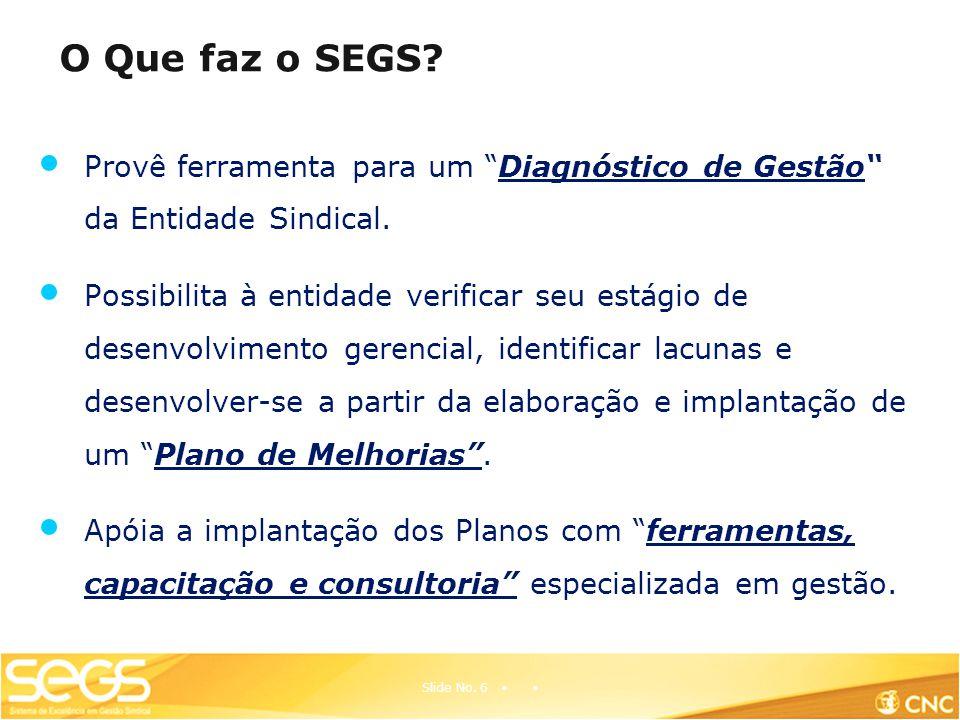 O Que faz o SEGS Provê ferramenta para um Diagnóstico de Gestão da Entidade Sindical.