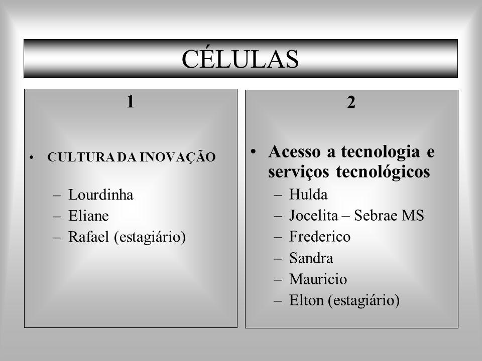 CÉLULAS 1 2 Acesso a tecnologia e serviços tecnológicos Lourdinha