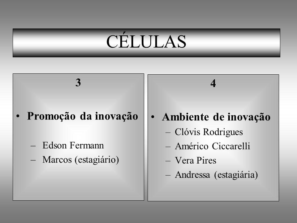 CÉLULAS 3 4 Promoção da inovação Ambiente de inovação Clóvis Rodrigues